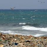Det flyder med plasticaffald langs den libansiske Middelhavskyst, men er det ensbetydende med, at Middelhavet er én suppe af plastic, som Verdensnaturfonden har påstået?