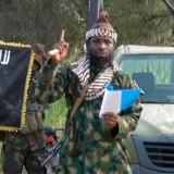Boko Harams leder i Nigeria, Abubakar Shekau, sværgede i 2016 troskab til Islamisk Stat. Siden har fraktioner af gruppen spredt sig i Afrika. I alt menes der at være 6.000 medlemmer af forskellige Islamisk Stat-grupper i de afrikanske lande omkring Sahel.