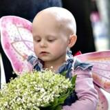 Et nyt forskningsprojekt skal blandt andet finde ud af, om børn kan arve tendensen til at få kræft.