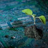 De danske forbrugere var i 2018 meget optagede af bæredygtige og klimavenlige varer, og trenden ser ifølge flere analytikere og eksperter ud til at fortsætte i 2019. Særligt den nye, teknologisk begavede generation vil komme til at sætte klima og teknolgi på forbrugsdagsordenen i fremtiden.