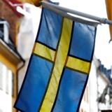 Hvad kan vi i Danmark lære af, at de svenske seniorer bliver længere på arbejdsmarkedet end de danske? Det vil beskæftigelsesminister Troels Lund Poulsen (V) gerne have svar på.