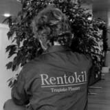 Rentokil har haft et forrygende 2018, hvor den varme sommer var godt nyt for skadedyr. (Arkivfoto) Jan Jørgensen/Ritzau Scanpix