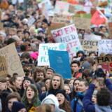 FridaysForFuture arrangerede i begyndelsen af marts en demonstration om klimaforandringer i Hamburg i Nordtyskland. Her deltog tusindvis af børn og unge i strejken. Det er samme organisation, der også har arrangeret fredagens demonstration.