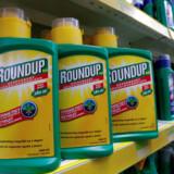 Er udkrudsmidlet Roundup kræftfremkaldende eller ej? USA og EU er tilsyneladende uenige. Nu har endnu en amerikansk landmand fået medhold i sin anklage om, at sprøjtemidlet har givet ham kræft.