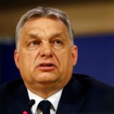 Viktor Orbán deltog selv i mødet onsdag i Bruxelles, hvor hans parti, Fidesz, blev suspenderet. REUTERS/Eva Plevier