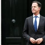 Den hollandske premierminister, Mark Rutte, er havnet i en kattepine efter valget til landets provinsråd i onsdags.