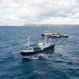 Der befinder sig en lang række redningsskibe i Middelhavet, som søger efter migranter i havsnød. Skibene på billedet har intet med onsdagens kapring at gøre.