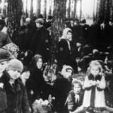 Jøder fra Ungarn i nærheden af krematoriet efter ankomsten til Auschwitz-Birkenau. Få timer efter blev de myrdet. Pigen i den lyse frakke er identificeret som Gertie Mermelstein, og sammen med hende ses hendes søster, mor, bedstemor og andre slægtninge.