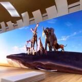 Det er stort – umådeligt stort, Sonys nye fladskærmsfjernsyn med en opløsning i 16K-kvalitet, men der kan gå årtier, før et fjernsyn i den opløsning står hjemme i stuen hos nogen. Foto: Sony