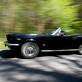 Klassiske biler som denne Ford Mustang har mange danske hjem, men i takt med at danskerne har taget »Cars & Coffee«-fænomenet til sig, kommer de oftere og oftere ud på landets pladser, torve og havne, så flere end blot ejerne får glæde af dem.