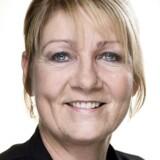 Pia Adelsteen, folketingsmedlem for Dansk Folkeparti, mener, at også de etablerede medier indeholder »junk«.