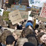»Atomkraft, drastisk reduktion af kødproduktion, flyveforbud osv. er altså groft sagt - uanset hvor militant de end måtte gennemtvinges - ikke løsningen på den galopperende klimakrise,« skriver Torben Steno.