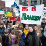 Unge demonstranter i Sverige, og som her i Danmark, har været med til at bringe klima helt frem på politikernes dagsorden. Nu har svenske tilhængere af atomkraft grebet bolden og fremhæver, at atomkraftværker kan være med til at begrænse CO2-udledningen.