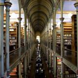 »Som barn i en minoritetskultur gik jeg næsten dagligt på biblioteket i mine frikvarterer, hvor jeg elskede at gå rundt i duften af bøger og nysgerrigt søge efter nye oplevelser,« skriver Halime Oguz.