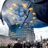 Demonstranter, der støtter det digitale indre marked, svinger EU-flaget foran Europa-Parlanmentet i Strabourg den 26. marts.