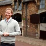 Ingen billeder med en rynket nyfødt og en udmattet mor. I stedet fik briterne prins Harry, der var i strålende form, da han mødte udvalgte medier – og med en grinende hest i baggrunden.