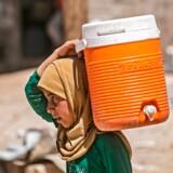 Tusinder af hovedsagligt kvinder og børn er interneret i Al Hol-lejren i det nordøstlige Syrien efter Islamisk Stats nederlag og sammenbrud. Mange af dem har mistet eller ødelagt deres identifikationspapirer. Omkring 9.000 af dem er registreret som udlændinge, heriblandt et ukendt antal europæere og skandinaver.