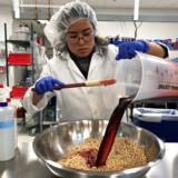 Impossible Foods kødalternativ er lavet med en slags genetisk modificeret gær, der skaber den røde væske som skal efterligne konsistensen i en blodig og saftig bøf.