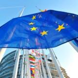 Europaparlamentsvalget bør ikke være ligegyldigt for investorer, idet det er parlamentet, der vedtager lovforslagene fra EU-Kommissionen og godkender kommissærerne. Her vajer flagene foran parlamentsbygningen i Strasbourg. Arkivfoto: Georges Gobet/AFP/Ritzau Scanpix