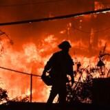 På dette fotografi fra 9. novbember 2018 ses brandmænd forsøge at bekæmpe skovbrandene langs Californiens Pacific Coast Highway i Malibu.