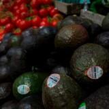 Avocadoer fra Mexico er blandt varer, der nu undgår at bliver ramt at Trumps straftold. Foto: Anna-Rose Gassot/AFP/Ritzau Scanpix