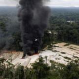 Skovbrand i Amazonas-regnskoven i Brasilien.