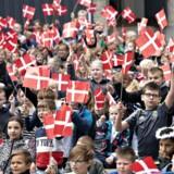 »Dannebrog er folkets flag. (...) Fra det tidspunkt tog danskerne flaget til sig, og det blev et folkeligt symbol, der samlede folket og skabte en national fællesskabsfølelse. Derfor ærgrer det mig, når jeg hører, hvordan Dannebrog anses som noget negativt og nationalistisk,« skriver Ali Aminali.