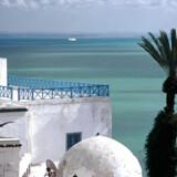 Turisterne er på vej tilbage til Tunesien, Nordafrikas mindste land. Foto: Scanpix