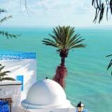 Den hippe forstad Sidi Bou Said er samlingspunkt for expats og lokale livsnydere med sin enestående udsigt over Middelhavet. Foto: Tunesiens Turistkontor.