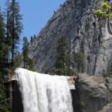 Om foråret er der stort tryk på smeltevandet fra Sierra Nevada-bjergene.