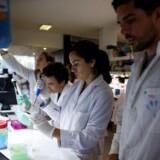 Lundbeck og en række andre medicinalselskaber indkalder til en form for »Løvens hule«, hvor forskere fra hele verden kan præsentere deres projekter og få en pose penge med hjem.