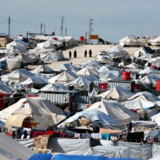 En lang række lande har hentet børn hjem fra lejre for IS-tilhængere. I weekenden gjorde Danmark det samme for første gang.