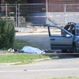 To mænd er afgået ved døden efter et skyderi i Sennepshaven i Herlev tirsdag aften.