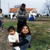 »BNP er først og fremmest vigtig, fordi økonomisk vækst har hjulpet over en milliard mennesker ud af ekstrem, slidsom fattigdom. En nylig undersøgelse af 121 lande viste, at gennemsnitsindtægten for de fattigste 40 pct. af befolkningen steg lige så hurtigt som samlede indkomster på landsplan over de sidste fire årtier,« skriver Bjørn Lomborg.