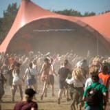 Festivalen kan blive udsat for en hård kogevask til næste år.