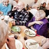 »Det accepteres tilsyneladende, at man punker sprogligt på ældre. Ordet »ældrebyrden« bliver nu mindre brugt, men er endnu ikke ude af sproget. Ingen forarges på samme måde over ordet, som man ville forarges, hvis nogle brugte et ord som »indvandrerbyrden«,« skriver Suzanne Ekelund.