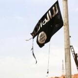 I marts erklærede Donald Trump Islamisk Stat besejret, da den sidste rest af terrorgruppens selverklærede kalifat i Syrien faldt. Men kun fire måneder efter vajer organisationens flag på ny. Arkivfoto.