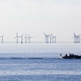 »Vi er nødt til at have blik for, at naturens ressourcer ikke er en uudtømmelig kilde, når vi indretter økonomien,« skriver Lars Andersen, direktør i Arbejderbevægelsens Erhvervsråd.