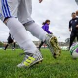 »Fire ud af ti danskere fungerer faktisk som frivillige, når det hele gøres op fra lokale fodboldklubber over sociale væresteder til kulturelle foreninger (...). De frivillige oplever, at de betyder noget, at de gør en forskel for andre mennesker. De indgår i et stærkt fællesskab,« skriver Morten Thomsen Højsgaard.