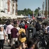 »Det siges, at 80 procent af københavnerne synes, det er fint med den kæmpe strøm af turister, der i disse år invaderer byen. Men det kan ikke være folk, der bor i Middelalderbyen. Vi er totalt oversvømmet af gående, cyklende og løbehjulskørende turister på fortovene, på pladserne, i gågaderne, i parkerne, så man må springe for livet,« skriver Lilian Sølbeck.