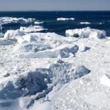 »Donald Trumps »absurditeter« demonstrerer, at klimaforandringerne giver Grønland nye muligheder,« skriver Per Stig Møller.