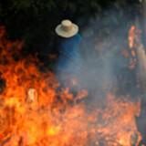 Brasiliens præsident beskylder ngo'er for at stå bag brandene.
