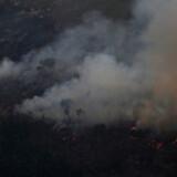 Den seneste uge er der blevet påsat tusindvis af skovbrande i Amazonas-regnskoven. Billedet er taget 21. august nær Porto Velho.