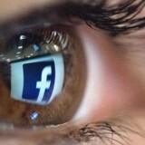 Facebooks dataindsamling – også fra ikke-Facebook-sider og af ikke-Facebook-brugere – skal nu for Tysklands højesteret, hvor konkurrencemyndighederne håber at få gennemtrumfet sin afgørelse om at tvinge den børsnoterede virksomhed til at stoppe. arkivfoto: Christophe Simon, Ritzau Scanpix