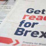 Den britiske regering har iværksat en kampagne, der både skal oplyse og berolige om den forestående Brexit. Britiske virksomheder er betydeligt mere bekymrede for fremtiden end husholdningerne – og med god grund.