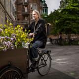 Leif Sigersen starter dagen klokken fire på blomstertorvet for at få de mest friske blomster.