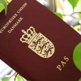 Det danske pas giver i øjeblikket adgang til 157 lande og er dermed et af verdens bedste ID-dokumenter, når det kommer til rejsefrihed. Arkivfoto.