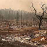 20.000 mennesker er blevet evakueret og mindst 17 er omkommet i de mest katastrofale brande i delstatens historie. De lokale kalder vinden, der bærer flammerne frem, 'Diablo' eller 'Djævlen'. Flammernes efterladenskaber i et boligkvarter i Santa Rosa, California.