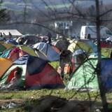 Antallet af asylansøgere slog rekord i 2015