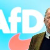 Alexander Gauland fra højrepartiet Alternative für Deutschland kan være tilfreds. Friske tal viser, at AfD er mere populær end socialdemokraterne i syv ud af 16 tyske delstater.
